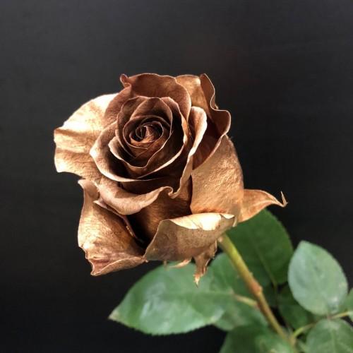 Золотая роза Минск